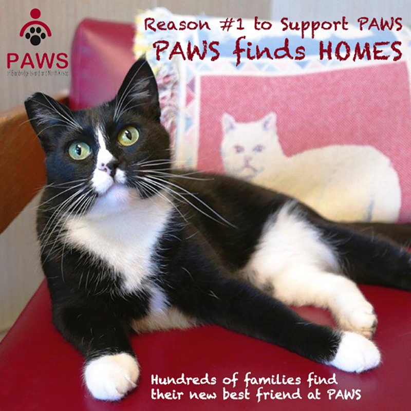 PAWS of Bainbridge Island and North Kitsap