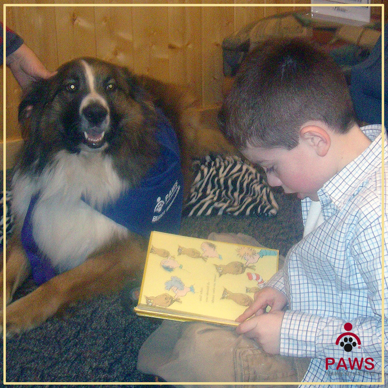 Kids Corner with PAWS