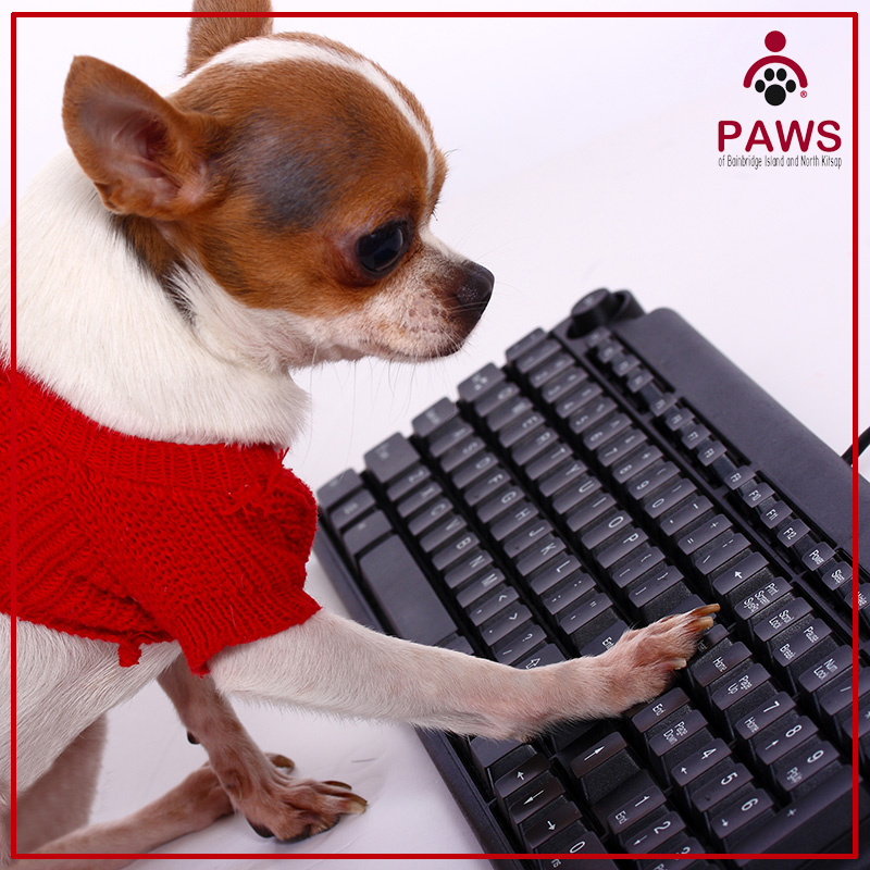PAWS Pet Care Library