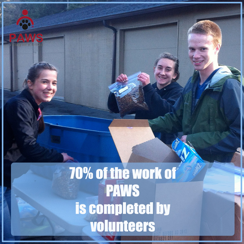 Volunteer to help PAWS