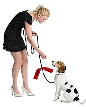 Red ribbon campaign for dogs